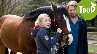 Geschenkter Gaul (Folge 63) | Tiere bis unters Dach | SWR Kindernetz