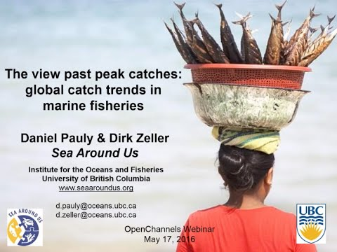 The View Past Peak Catches: Global Catch Trends in Marine Fisheries