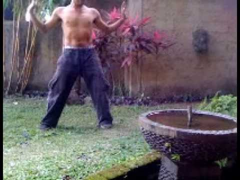 Kung Fu Shuang Yang Crane Style Soft