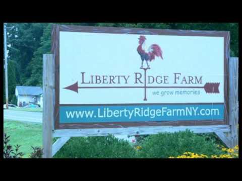 NY Farm Bans Gay Weddings