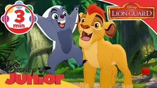 Video The Lion Guard | Zuka Zama Zom Zom Zom Song  | Disney Junior UK download MP3, 3GP, MP4, WEBM, AVI, FLV November 2017
