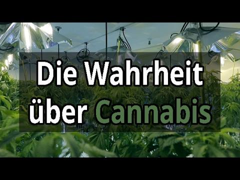 Warum Cannabis 2017 legalisiert werden muss! | Die Kultur des Rausches [Dokumentation Deutsch/HD]