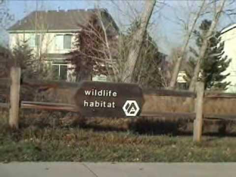 Arvada Colorado - Westwood Park