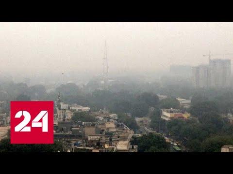 Уровень загрязнения воздуха в Дели достиг критического уровня - Россия 24