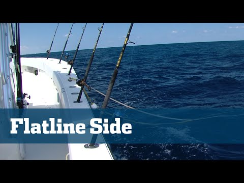 Florida Sport Fishing TV - Kite Fishing Flat Line Set Up