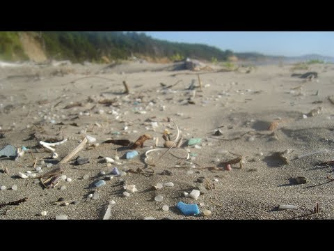 Naturlig onsdag Bergen / Plastjakten Hordaland: Fra søppelrydding til forebygging