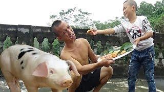 Mao Đệ Đệ Làm Bánh Rán Pizza Tổng Hợp Cám Lợn Cũng Chào Thua ( Synthetic Pizza )
