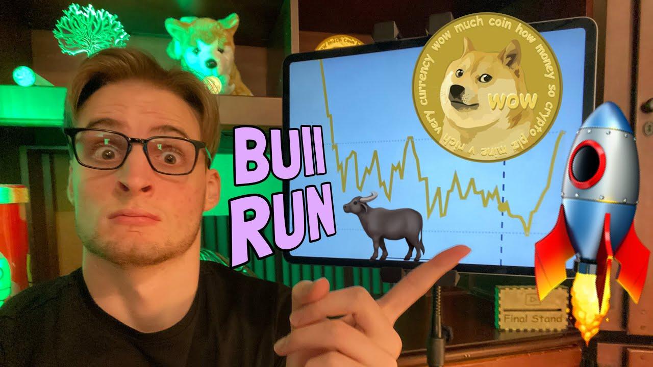 🚀 Dogecoin Bull Run Sparking 🚀