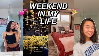 WEEKEND IN MY LIFE | new years, family time, & more! Nicole Laeno