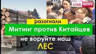 Разогнали Митинг против вырубка леса Китайцами! май Россия 2018
