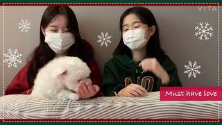 브라운아이드걸스 & SG워너비 - Must Have Love | cover by 정원 & 주원