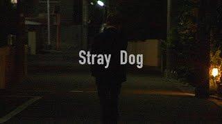【映画「Stray Dog」公開!】 劇団SUNの秘蔵映像お披露目です!2014年…...