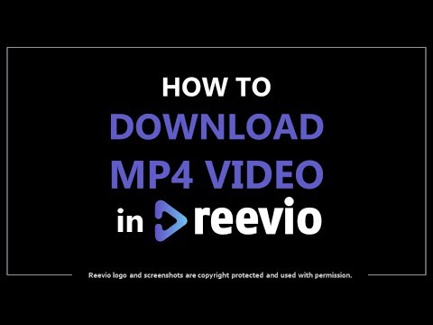 How to Download MP4 Videos in Reevio