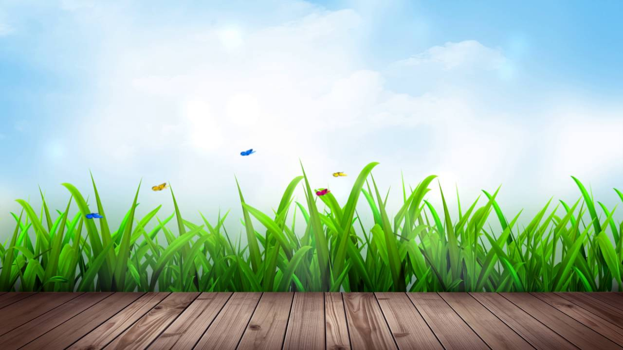 Video Background Full Hd Garden Deck - Youtube-9952