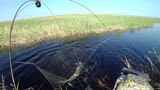 Маленький ручей полный рыбы. Рыбалка на паук подьемник.