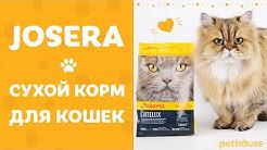 Сухой корм для кошек JOSERA. Обзор обновленной линейки.