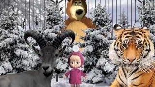 Маша и медведь, Мишкина сказка, Хитрый козел Тимур и тигр Амур мультфильм