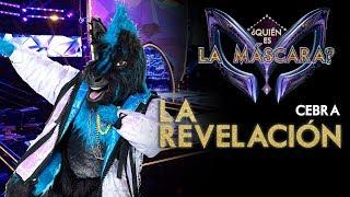 La_Revelación_de_Cebra_ _¿Quién_es_la_Máscara?