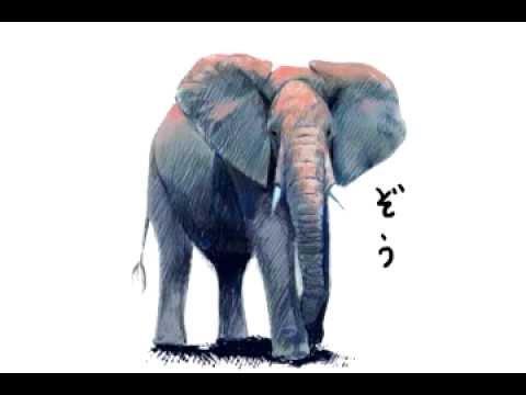 ゾウの絵を描く Drawing an Elephant.