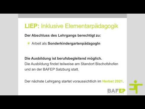 Ausbildungsformen der BAfEP
