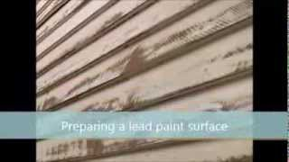 Lead Paint and Human Health