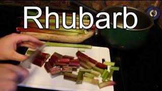Harvesting Rhubarb And Making Rhubarb Sauce - Rhubarb Sauce Recipe :-)