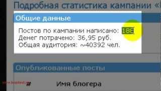 Как быстро удвоить трафик на сайт фишки с Инфолидеров 2013)