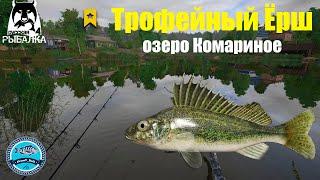 Трофейный Ёрш на озере Комариное Русская Рыбалка 4
