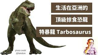 ????兒童恐龍百科 為什麼暴龍到亞洲變成特暴龍 Tarbosaurus?