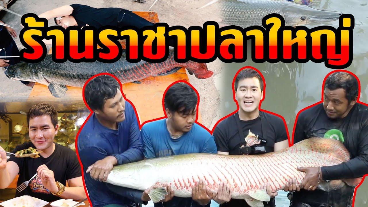 ร้านราชาปลาใหญ่   ไทยทึ่ง WOW! THAILAND