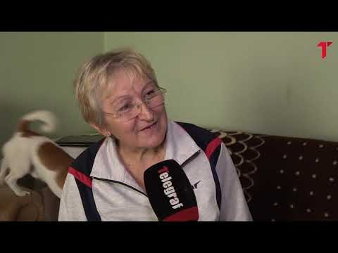 Telegraf u kući Milana Pavkova, gde vozi traktor i hrani stoku - Telegraf.rs TV