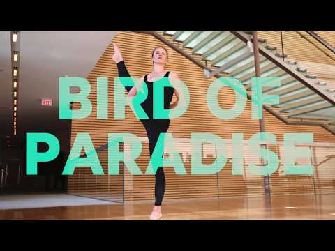 Show off your flexibility with Bird of Paradise: Yoga Moves