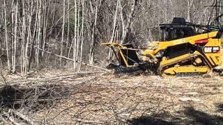 Forestry Skid Steer For Sale Alot Com