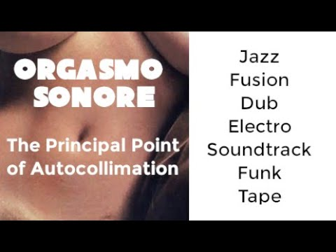 Orgasmo Sonore - The Principal Point of Autocollimation EP