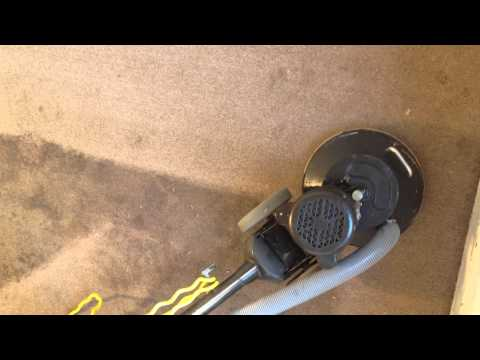 Carpet Cleaning for a VERY dirty carpet. in Norfolk, VA