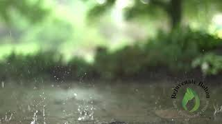 Get to SLEEP easily with RELAXING Sounds.  1 Hour of RAINFALL.