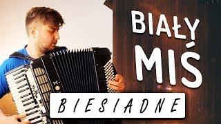 Biesiadne - Biały miś - akordeon