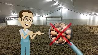 RESTRAIN: хранение картофеля  без прорастания