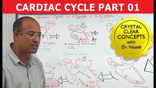 Dr Najeeb Lectures: Heart Function - Cardiac Cycle