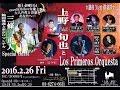 新潟ブルース ♬上野旬也とLos Primeros Orquesta