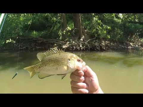Indiana Creek Fishing