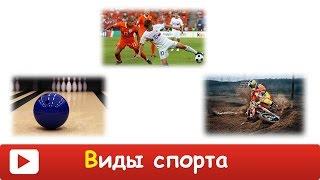 видео Лучшие виды спорта для детей