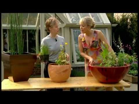 Nicki Chapman interview on BBC Chelsea 2012