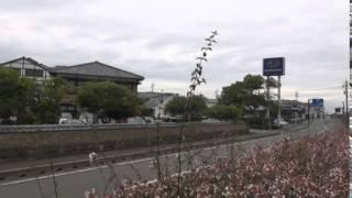 明楽茂村 - JapaneseClass.jp