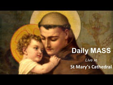 St Anthony Of Padua: How Do I Use My Tongue?