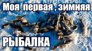 Зимняя рыбалка на ротана в Новосибирске!!!
