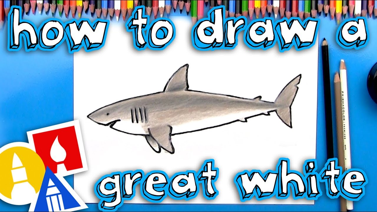 How To Draw A Great White Shark - YouTube