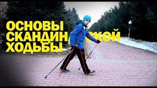 Основы скандинавской ходьбы | правила поведения на забегах