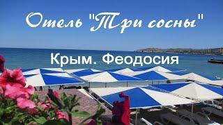 Отель Три сосны.  Феодосия.  Отдых в Крыму