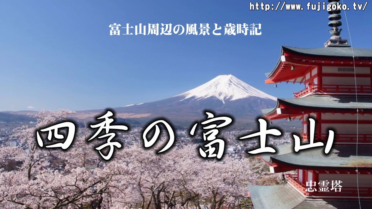 Mount Fuji WebCam (Japan's Best)